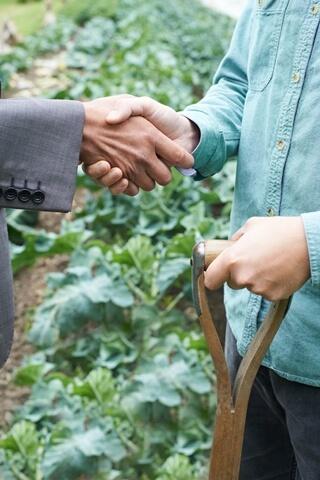 Farmers shaking hands in field