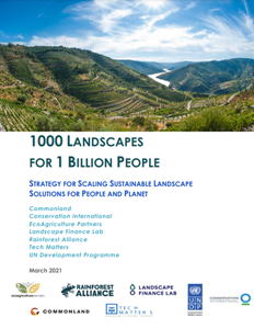 Strategy for scaling sustainable landscape solutions for people and planet report cover